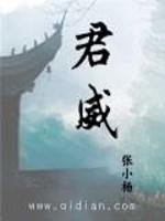 《君威》作者:张小杨