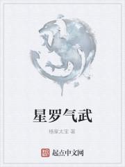 《星罗气武》作者:杨家太宝