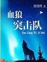 《血狼突击队》作者:徐晓枫