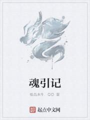 《魂引记》作者:极品水牛.QD