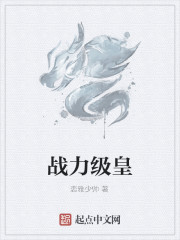 《战力级皇》作者:恋雅少帅