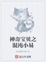 《神奇宝贝之混沌小易》作者:草笛魔音蓝叶