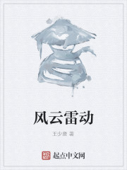 《风云雷动》作者:王少唐