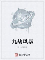 《九劫风暴》作者:冰封幻羽
