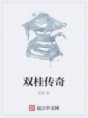 《双桂传奇》作者:雪峻