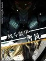 《战斗装甲雪风》作者:高天高原