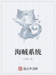 《海贼系统》作者:小粽叶