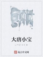 《大唐小宝》作者:LPQ123