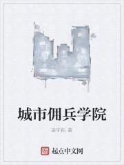 《城市佣兵学院》作者:凌宇佑