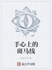 《手心上的斑马线》作者:东林夕亭.QD