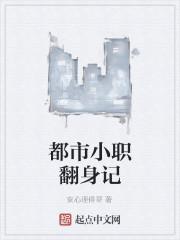 《都市小职翻身记》作者:安心理得哥