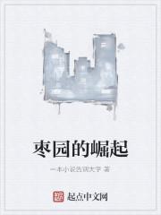 《枣园的崛起》作者:一本小说告别大学