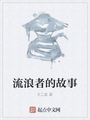 《流浪者的故事》作者:王二蛋