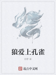 《狼爱上孔雀》作者:念孽
