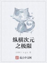 《纵横次元之极限》作者:小妖Kings