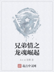 《兄弟情之龙魂崛起》作者:Ace雷鹰