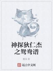 《神探狄仁杰之鸳鸯谱》作者:董风