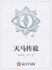 《天马传说》作者:夜游症.QD