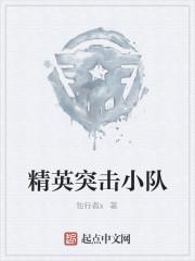 《精英突击小队》作者:独行者x