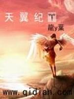 《天翼纪》作者:龙y叶