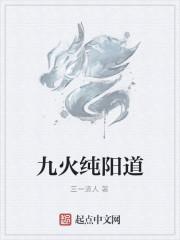 《九火纯阳道》作者:三一道人