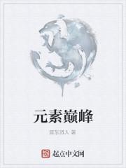 《元素巅峰》作者:晋东贤人