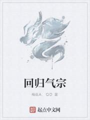 《回归气宗》作者:梅花A.QD