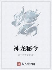 《神龙秘令》作者:南方的青花瓷