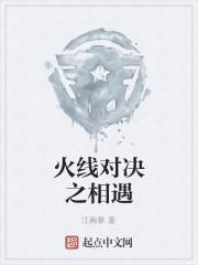 《火线对决之相遇》作者:江南挚