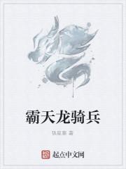 《霸天龙骑兵》作者:铁星寒