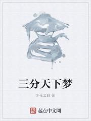 《三分天下梦》作者:李花之白