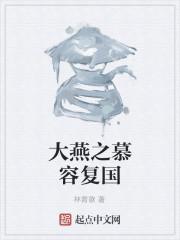 《大燕之慕容复国》作者:林青歌