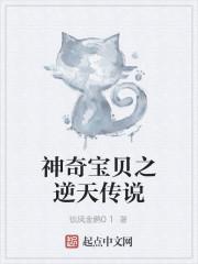 《神奇宝贝之逆天传说》作者:锁风金鹏01