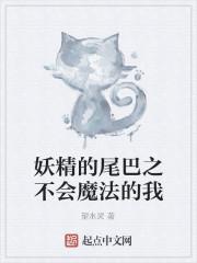 《妖精的尾巴之不会魔法的我》作者:望水灵