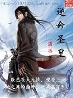 《逆命圣皇》作者:潇瑶.QD