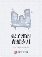 《张子琪的青葱岁月》作者:吃灰太狼的懒羊羊