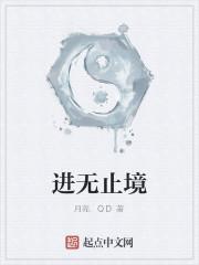 《进无止境》作者:月亮.QD