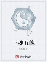 《三魂五魄》作者:段伦悦