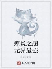 《煌炎之超元界最强》作者:暗翼猫王