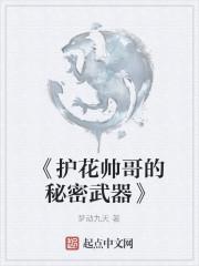 《《护花帅哥的秘密武器》》作者:梦动九天