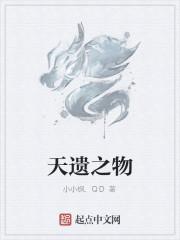 《天遗之物》作者:小小枫.QD
