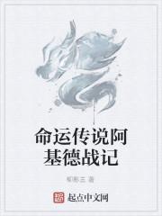 《命运传说阿基德战记》作者:柳影兰