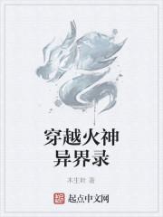 《穿越火神异界录》作者:木生叶