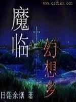 《魔临幻想乡》作者:日落云烟