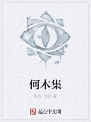《何木集》作者:禾页.QD