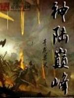 《《神陆巅峰》》作者:青龙奥义