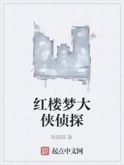 《红楼梦大侠侦探》作者:陈容国