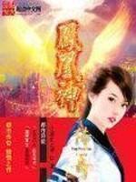 《凤凰神传奇》作者:小彩虹之神