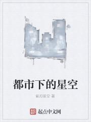 《都市下的星空》作者:紫刃星空