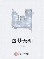 《盗梦天涯》作者:乂木